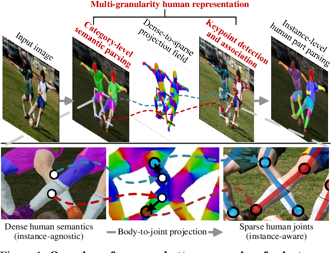 Figure 1 for Differentiable Multi-Granularity Human Representation Learning for Instance-Aware Human Semantic Parsing