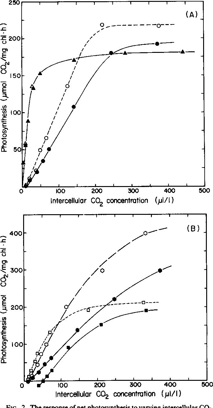 Photosynthetic Characteristics of C(3)-C(4) Intermediate Flaveria ...