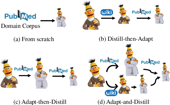 Figure 1 for Adapt-and-Distill: Developing Small, Fast and Effective Pretrained Language Models for Domains
