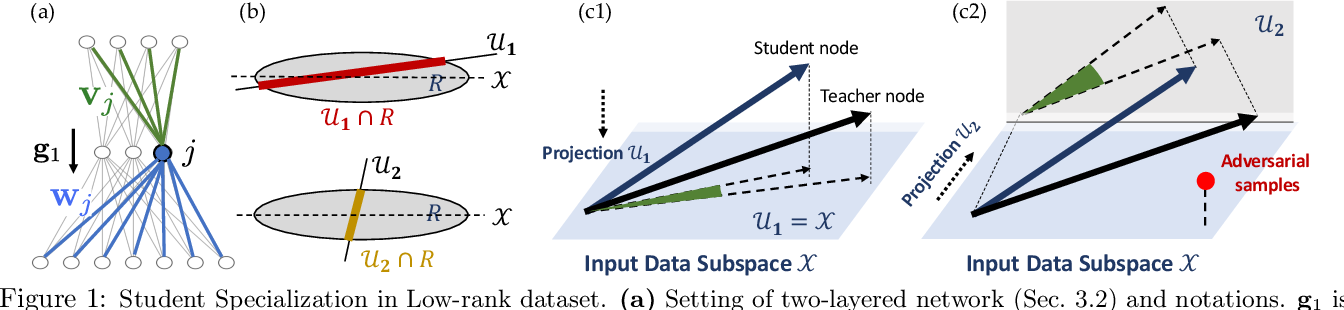 Figure 1 for Understanding Robustness in Teacher-Student Setting: A New Perspective