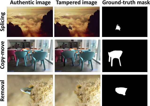 Figure 1 for Learning Rich Features for Image Manipulation Detection