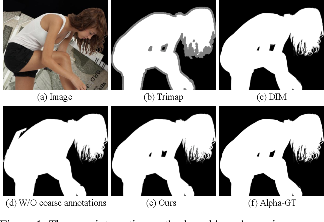 Figure 1 for Boosting Semantic Human Matting with Coarse Annotations