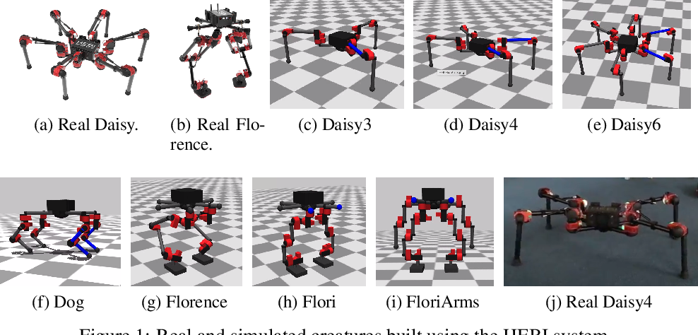 Figure 1 for Towards General and Autonomous Learning of Core Skills: A Case Study in Locomotion