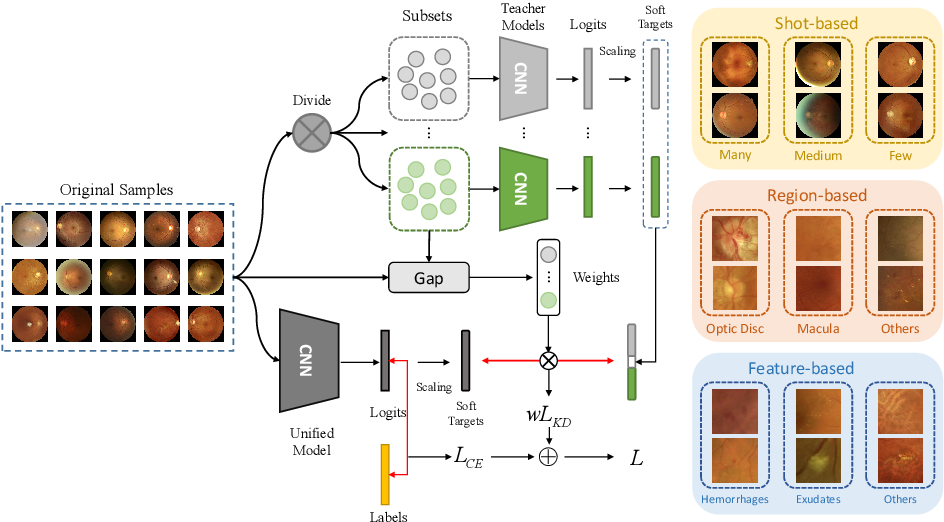 Figure 3 for Relational Subsets Knowledge Distillation for Long-tailed Retinal Diseases Recognition