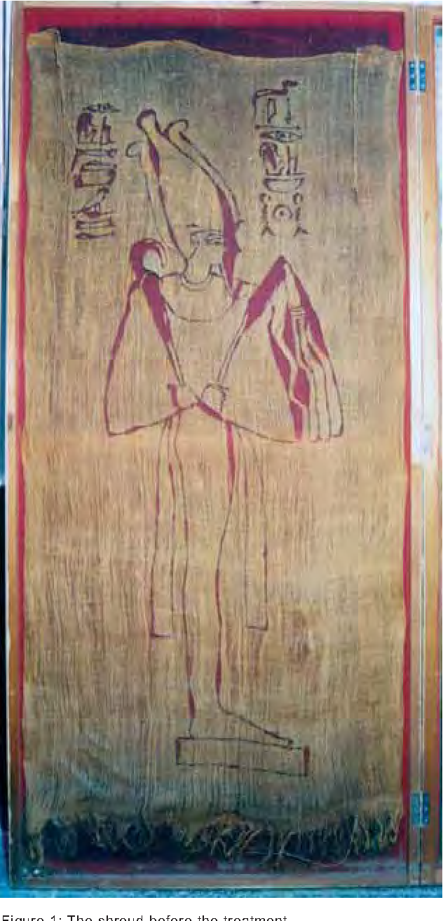 Figure 1 from CONSERVATION OF A RARE PAINTED ANCIENT