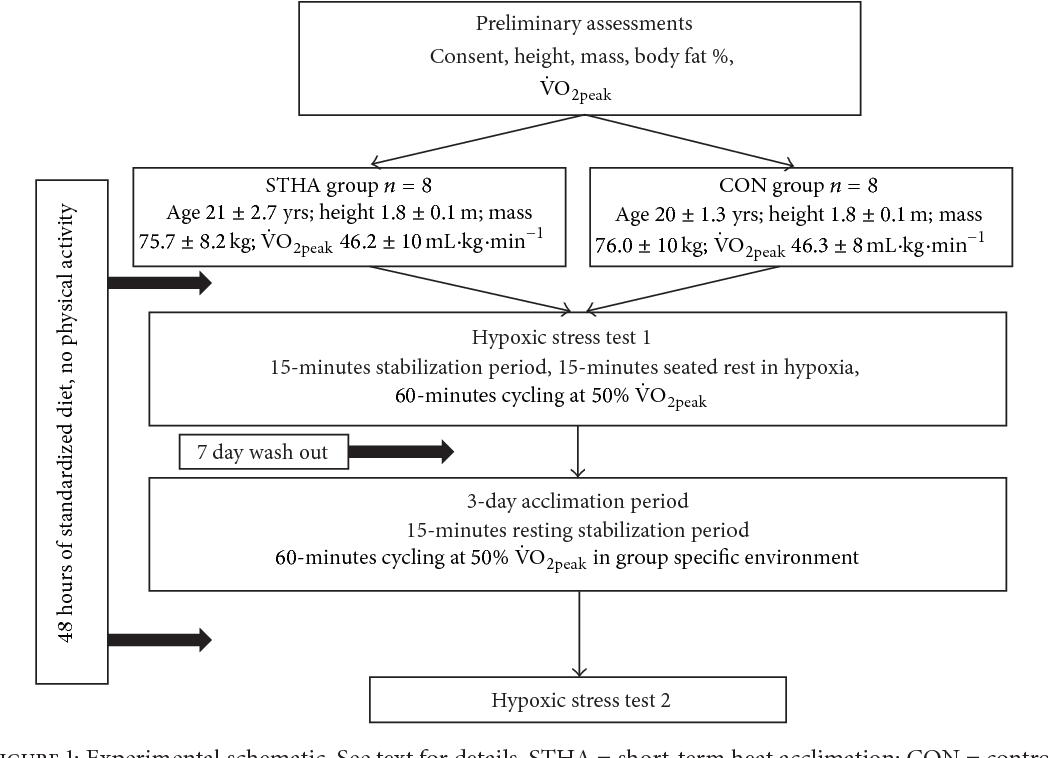 PDF] Human Monocyte Heat Shock Protein 72 Responses to Acute