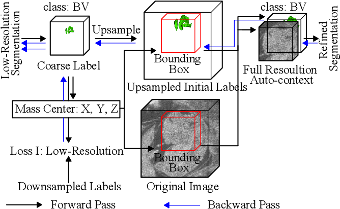 Figure 4 for Deep Mouse: An End-to-end Auto-context Refinement Framework for Brain Ventricle and Body Segmentation in Embryonic Mice Ultrasound Volumes