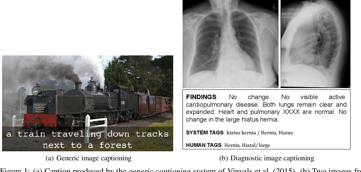 Figure 1 for Diagnostic Captioning: A Survey