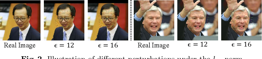 Figure 3 for Towards Privacy Protection by Generating Adversarial Identity Masks