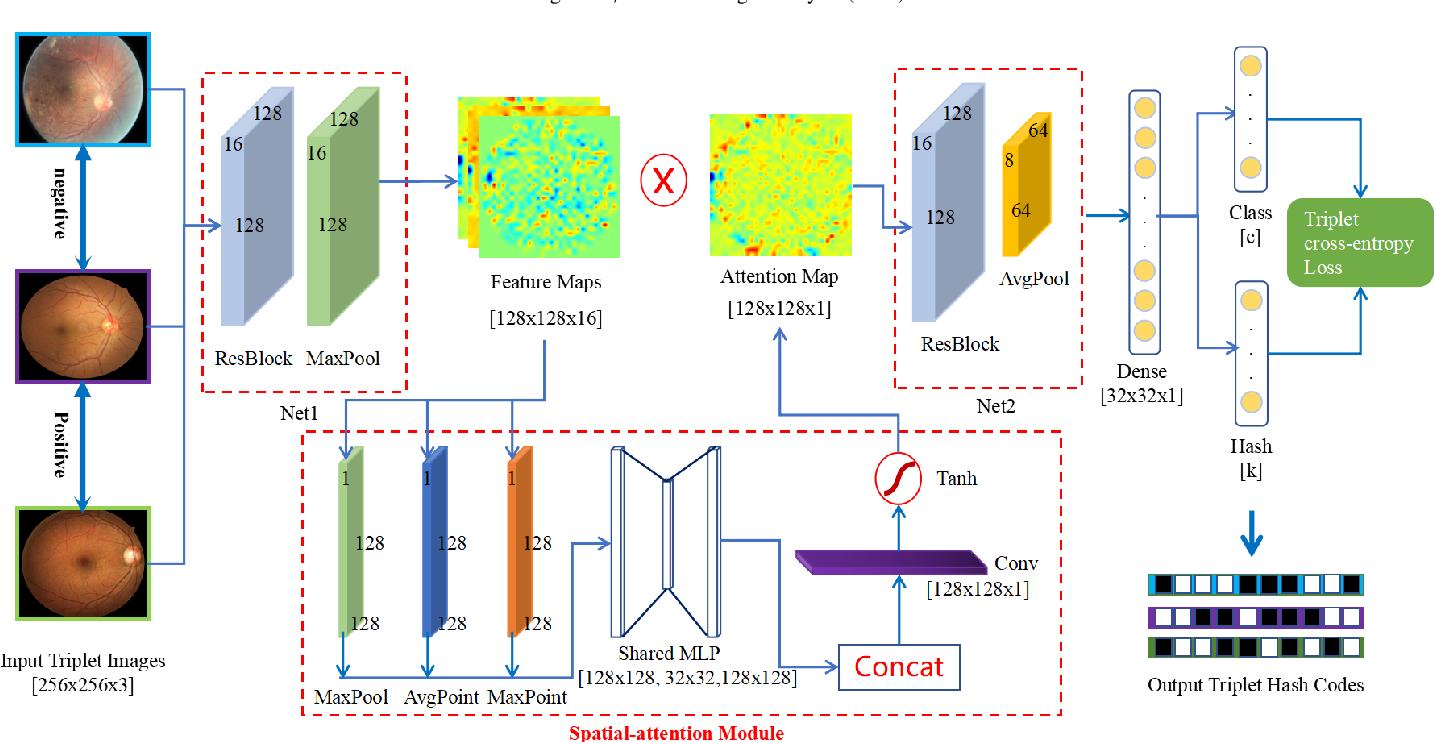 Figure 3 for Deep Triplet Hashing Network for Case-based Medical Image Retrieval