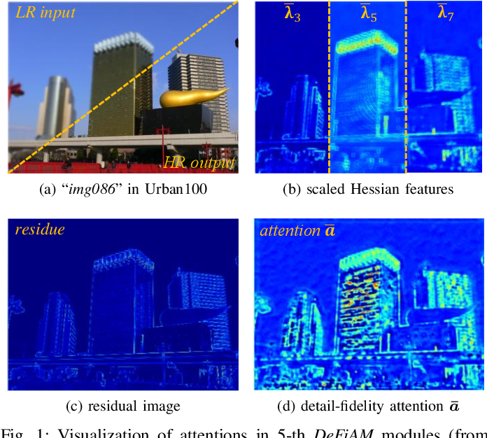 Figure 1 for Interpretable Detail-Fidelity Attention Network for Single Image Super-Resolution
