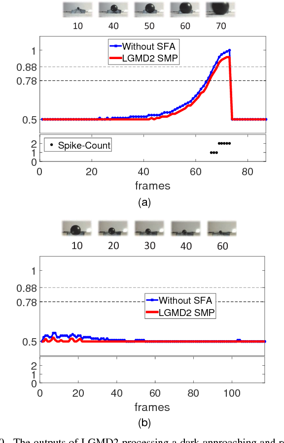 Figure 2 for Collision Selective Visual Neural Network Inspired by LGMD2 Neurons in Juvenile Locusts