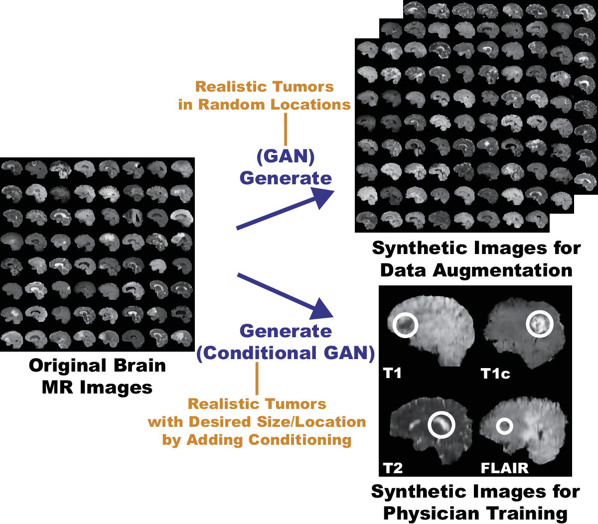 Figure 2 for Pathology-Aware Generative Adversarial Networks for Medical Image Augmentation