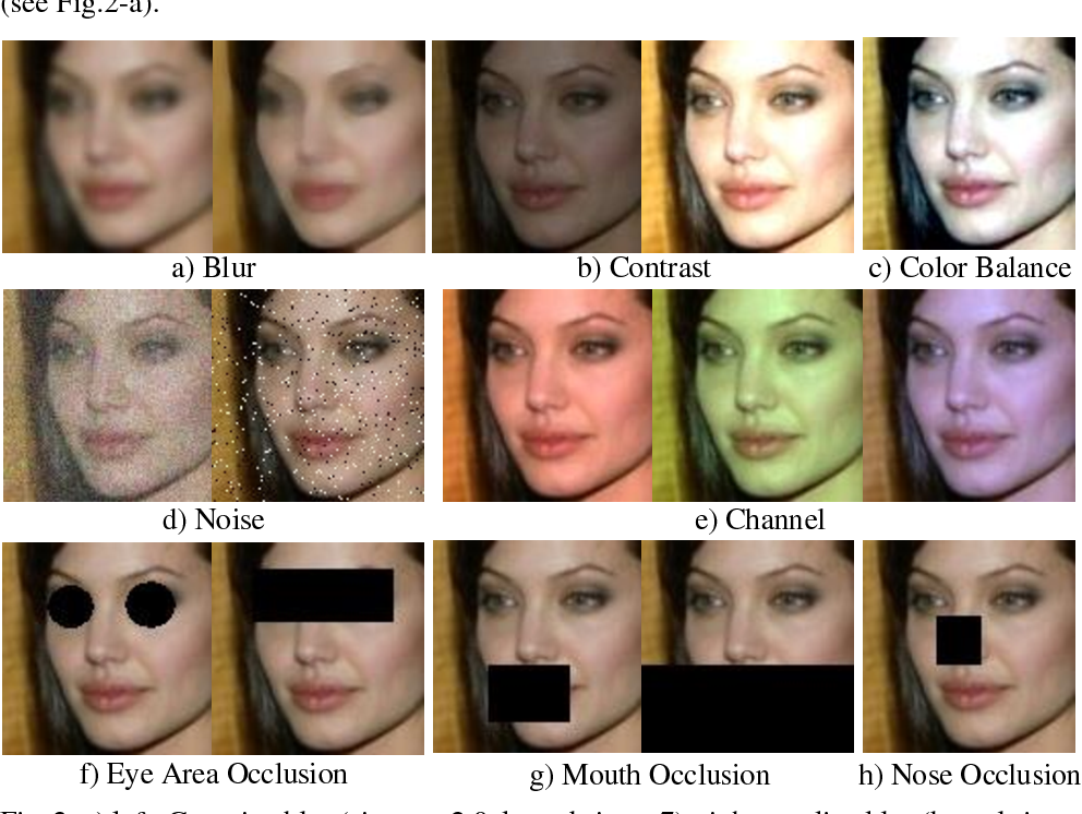 Figure 2 for How Image Degradations Affect Deep CNN-based Face Recognition?