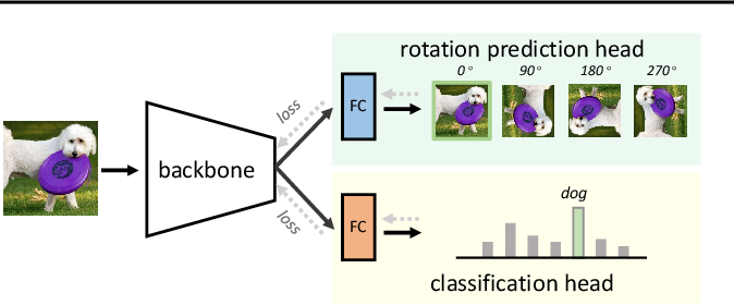 Figure 1 for What Does Rotation Prediction Tell Us about Classifier Accuracy under Varying Testing Environments?
