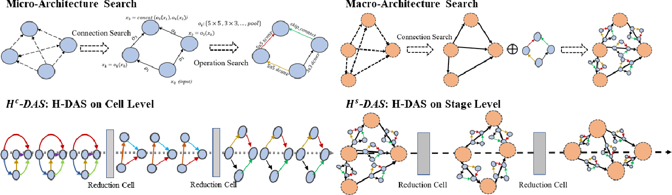 Figure 3 for Unchain the Search Space with Hierarchical Differentiable Architecture Search