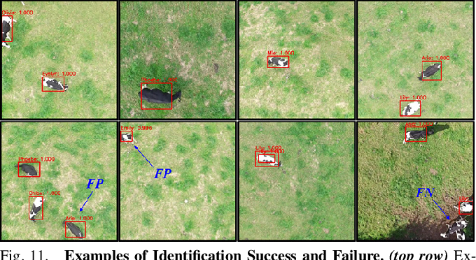 Figure 3 for Aerial Animal Biometrics: Individual Friesian Cattle Recovery and Visual Identification via an Autonomous UAV with Onboard Deep Inference