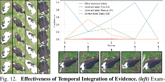 Figure 4 for Aerial Animal Biometrics: Individual Friesian Cattle Recovery and Visual Identification via an Autonomous UAV with Onboard Deep Inference