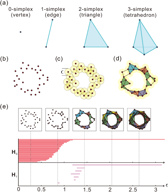 Figure 1 for Demonstration of Topological Data Analysis on a Quantum Processor