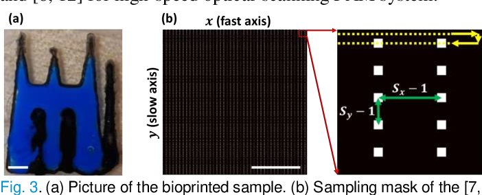 Figure 3 for Deep Image Prior for Sparse-sampling Photoacoustic Microscopy