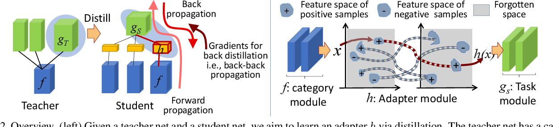 Figure 3 for Network Transplanting