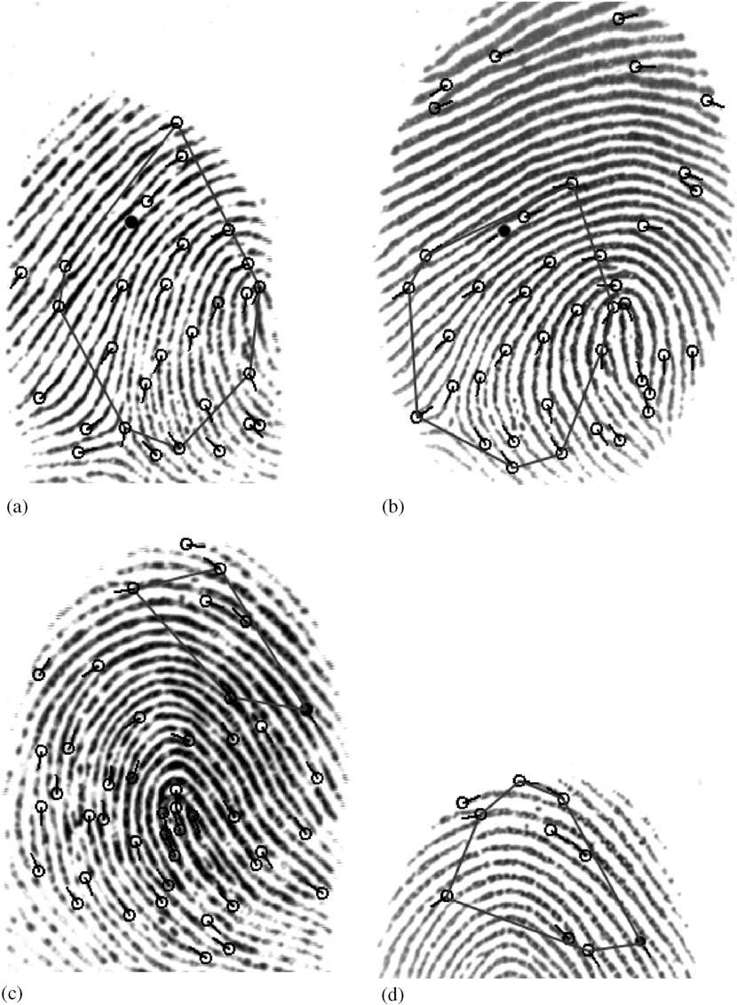 figure 11 from a minutia-based partial fingerprint recognition system