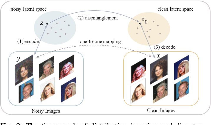 Figure 2 for Disentangling Noise from Images: A Flow-Based Image Denoising Neural Network
