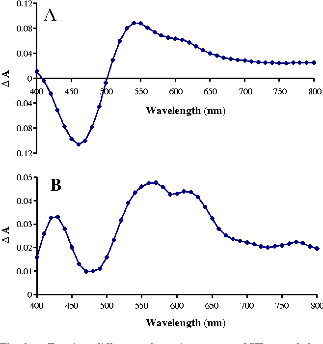 Fig. 9 A Transient difference absorption spectra of HB recorded at 4 μs after the laser flash at 500 nm. B Transient difference absorption spectra of HBT-DNA recorded at 4 μs after the laser flash at 500 nm