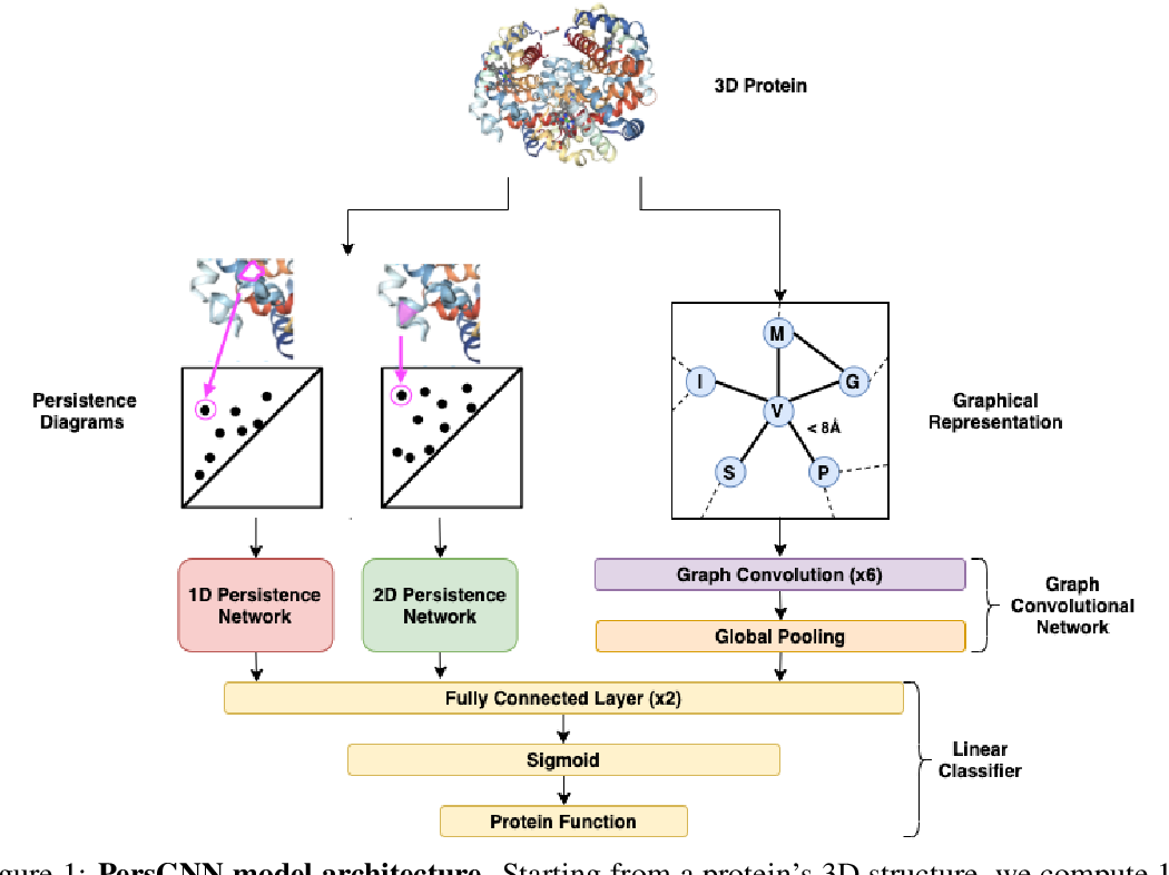 Figure 1 for PersGNN: Applying Topological Data Analysis and Geometric Deep Learning to Structure-Based Protein Function Prediction