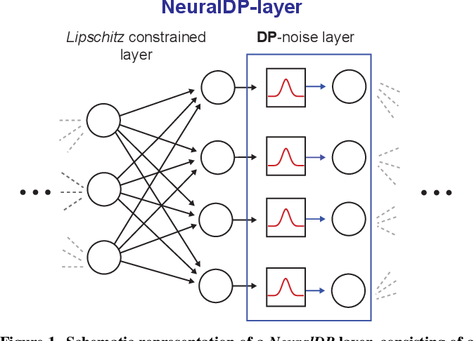 Figure 1 for NeuralDP Differentially private neural networks by design