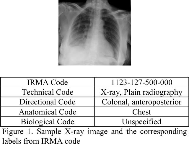 X-ray image classification using domain transferred convolutional