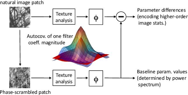 Figure 2 for A Generative Model of Natural Texture Surrogates