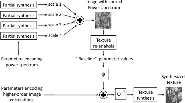 Figure 3 for A Generative Model of Natural Texture Surrogates