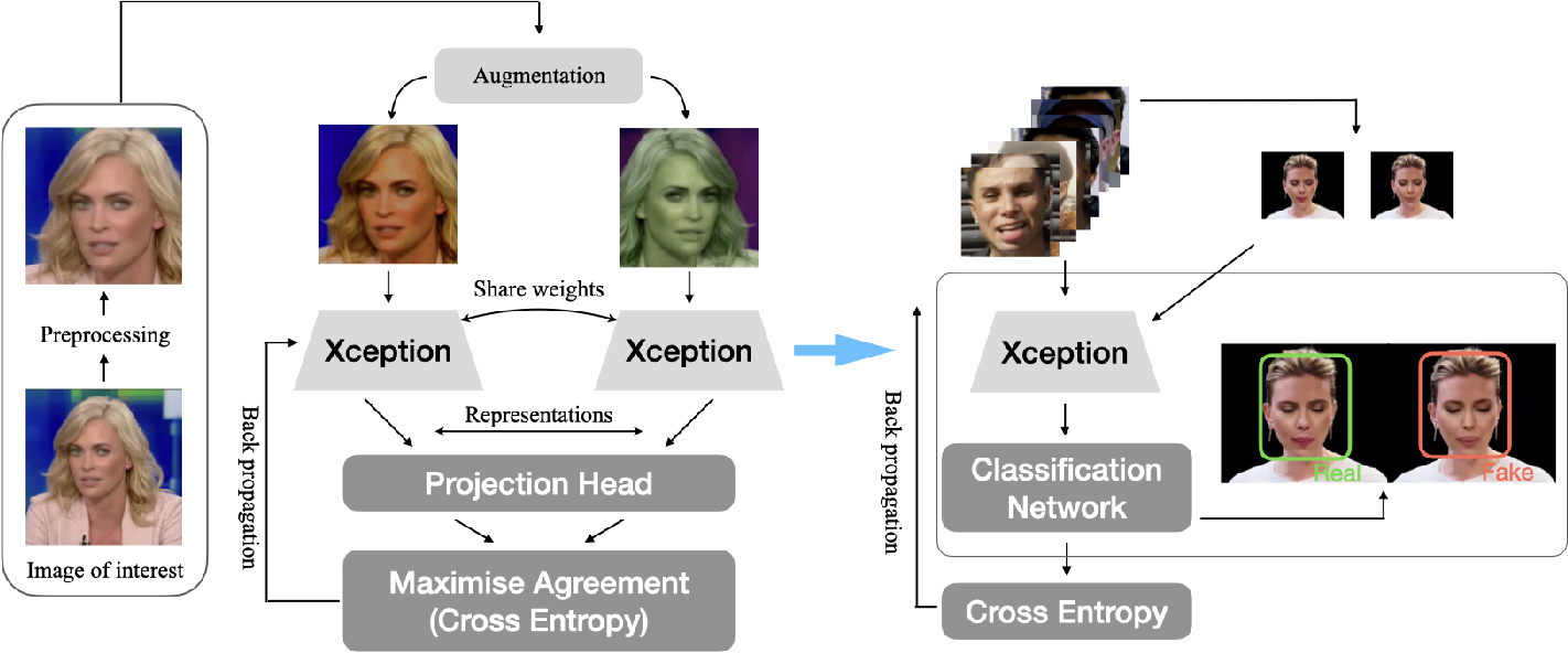 Figure 1 for DeepfakeUCL: Deepfake Detection via Unsupervised Contrastive Learning