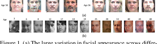 Figure 1 for Deep Regression Forests for Age Estimation