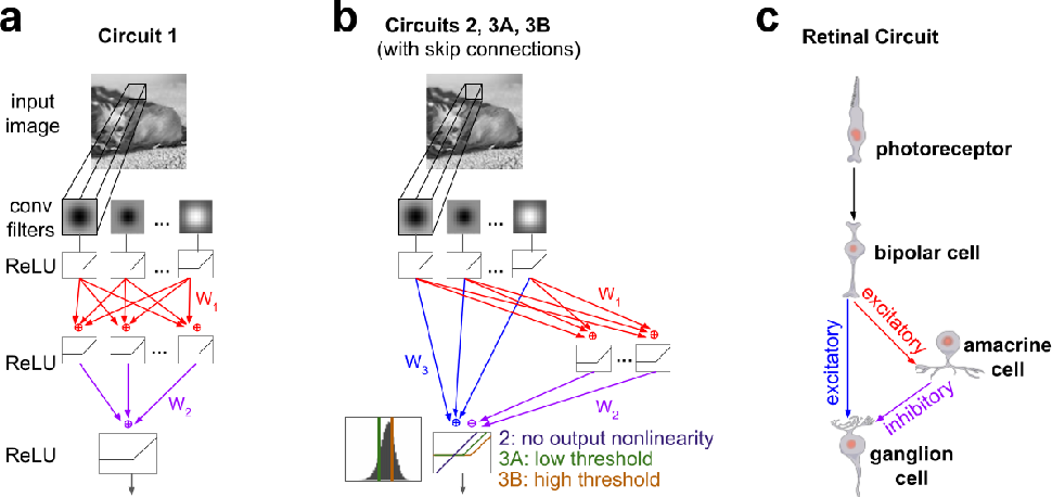 Figure 2 for Fine-Grained System Identification of Nonlinear Neural Circuits