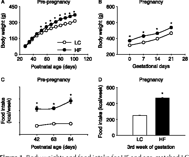 Figure 1 Body weights and food intake for HF and age-matched LC female rats in the pre-pregnancy and pregnancy periods. Body weights in the pre-pregnancy period from postnatal days 24 to 105 (A) and during pregnancy (B) and food intake in the pre-pregnancy period (C) and during pregnancy (D) for HF and age-matched LC female rats. The results are expressed as meansGS.E.M. (nZ6–8). *P%0.05 compared with LC.