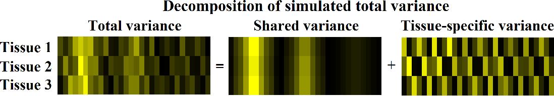 Figure 1 for Sparse multi-view matrix factorisation: a multivariate approach to multiple tissue comparisons