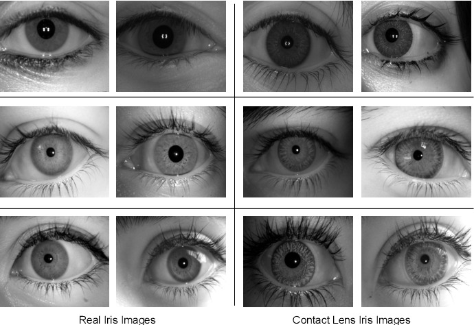 Figure 1 for Generalized Iris Presentation Attack Detection Algorithm under Cross-Database Settings
