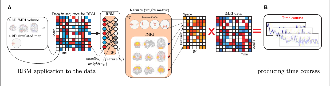Figure 1 for Deep learning for neuroimaging: a validation study
