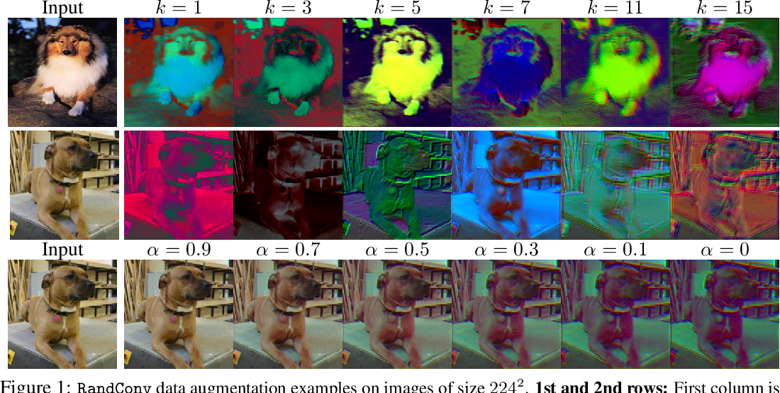 Figure 1 for Robust and Generalizable Visual Representation Learning via Random Convolutions