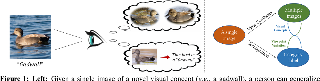 Figure 1 for Bowtie Networks: Generative Modeling for Joint Few-Shot Recognition and Novel-View Synthesis