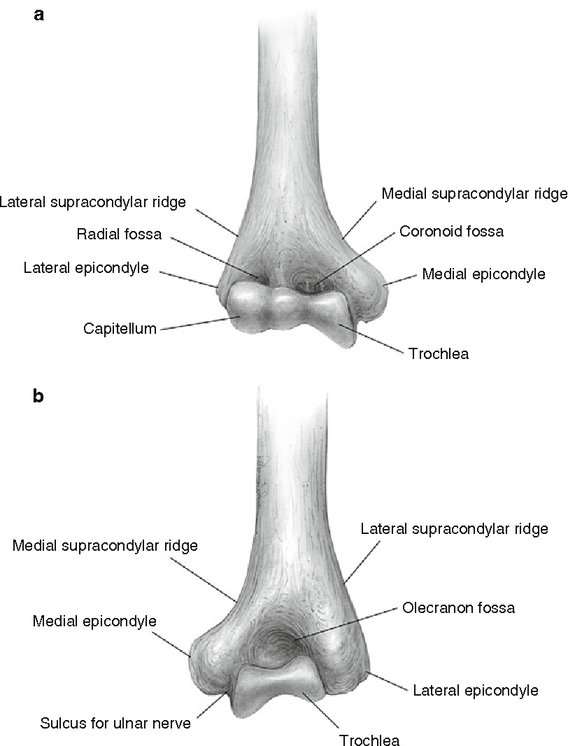 Minimally Invasive Treatment Of Lateral Ulnar Collateral Ligament