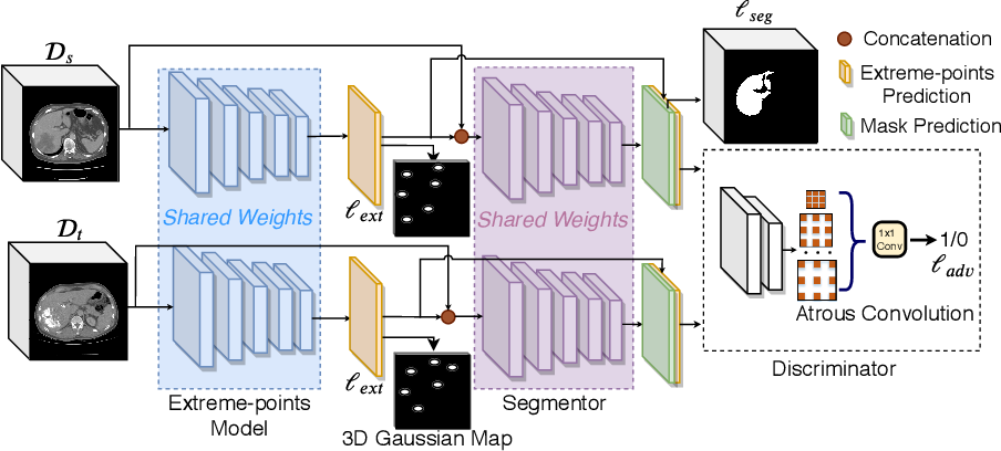 Figure 1 for User-Guided Domain Adaptation for Rapid Annotation from User Interactions: A Study on Pathological Liver Segmentation