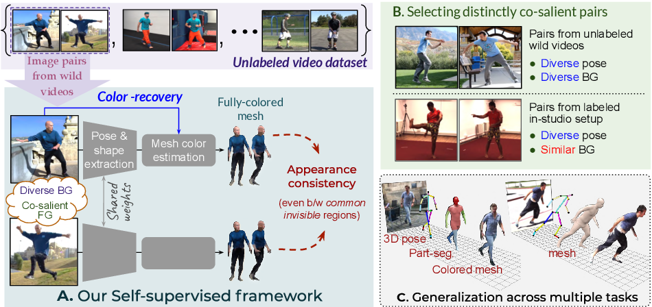 Figure 1 for Appearance Consensus Driven Self-Supervised Human Mesh Recovery
