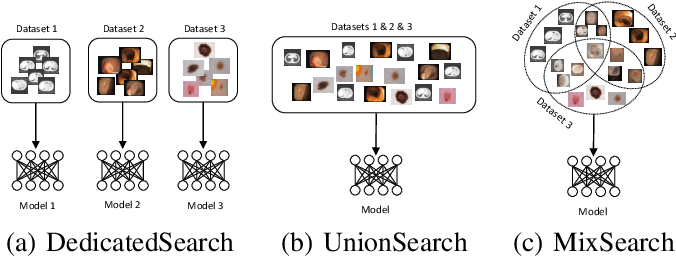 Figure 1 for MixSearch: Searching for Domain Generalized Medical Image Segmentation Architectures