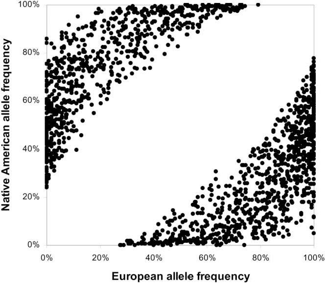 Figure 4. European and Native American allele frequencies for the 1,649 markers in the final map, which are based on the results of validation genotyping.