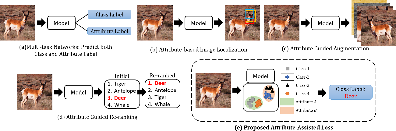 Figure 2 for Enhancing Fine-Grained Classification for Low Resolution Images