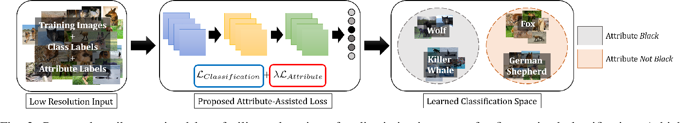 Figure 3 for Enhancing Fine-Grained Classification for Low Resolution Images