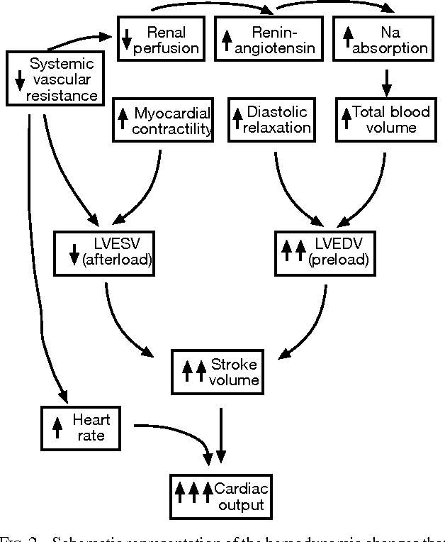 Figure 2 From Hyperthyroid Heart Disease